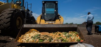 Food Waste: Think Before You Plate