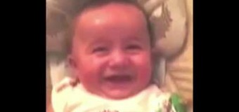 The World's Most Hilarious Baby Laugh Is Here!