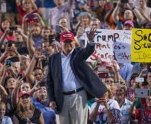 Violence at Trump Rallies Up
